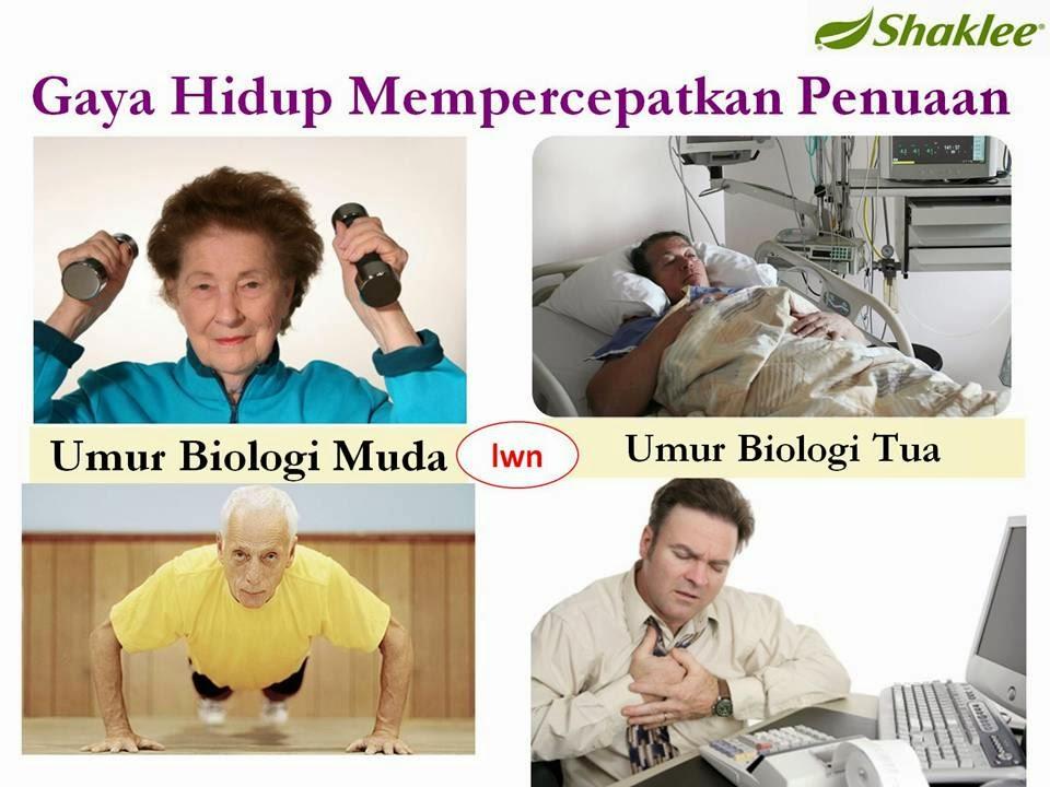 vivix suplemen anti penuaan