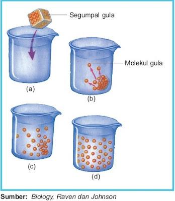 proses mekanisme difusi