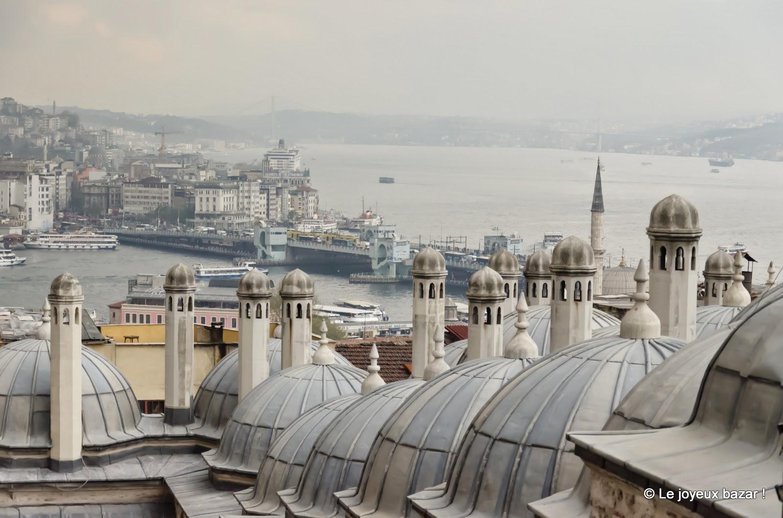 Istanbul - vue sur les coupoles et le Bosphore