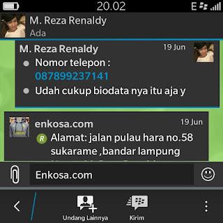 Alamat lengkap M Reaza fenaldy