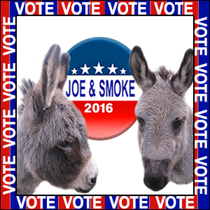 Vote For Joe and Smoke