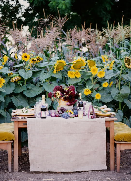 Wedding Design Decor Sunflower vineyard