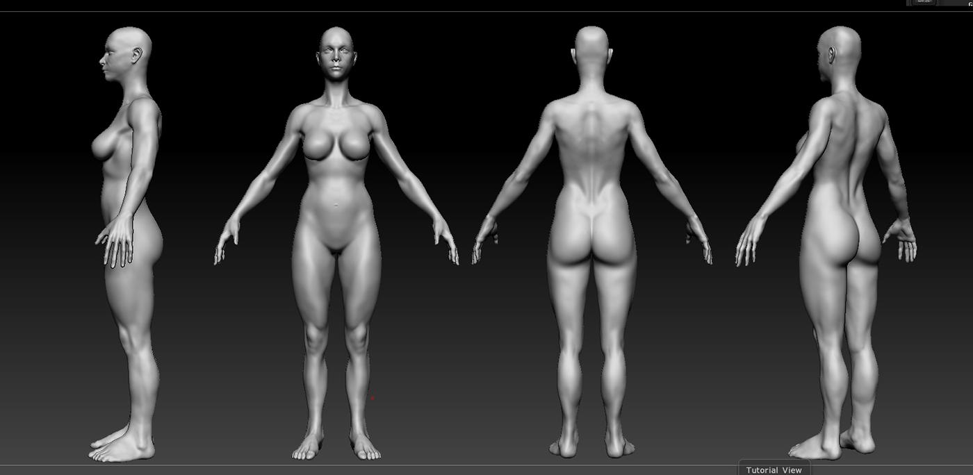 Adrián Noé: Anatomía Mujer
