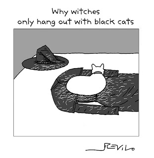 Why witches have only black cats