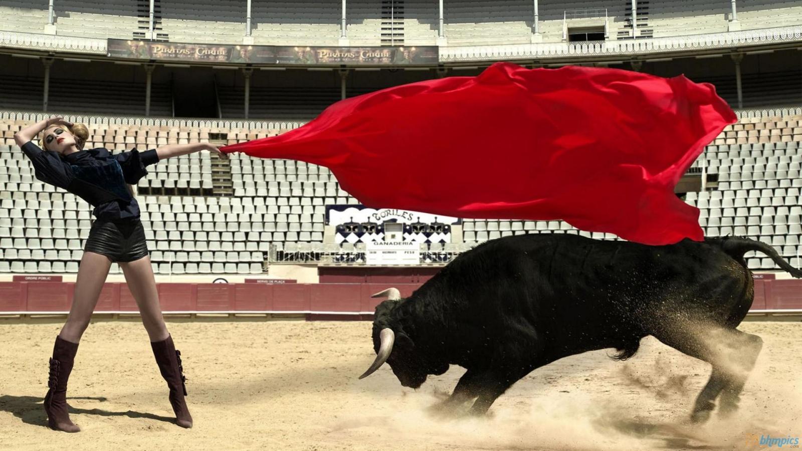 bull fighting 1920x1080 hd - photo #17