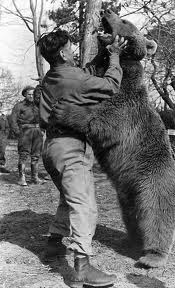 WW2 2nd Polish Corps - Polish soldier wrestling with Private Wojtek