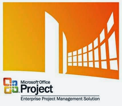 ms project management