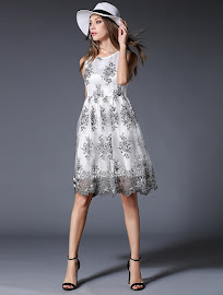 Sleeveless Embroidery Net Lace Flare Dress