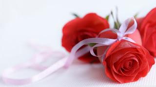 Hình nền hoa hồng đẹp lãng mạn nhất thế giới