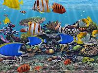 3d Aquarium Screensaver2