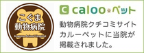 calooペット