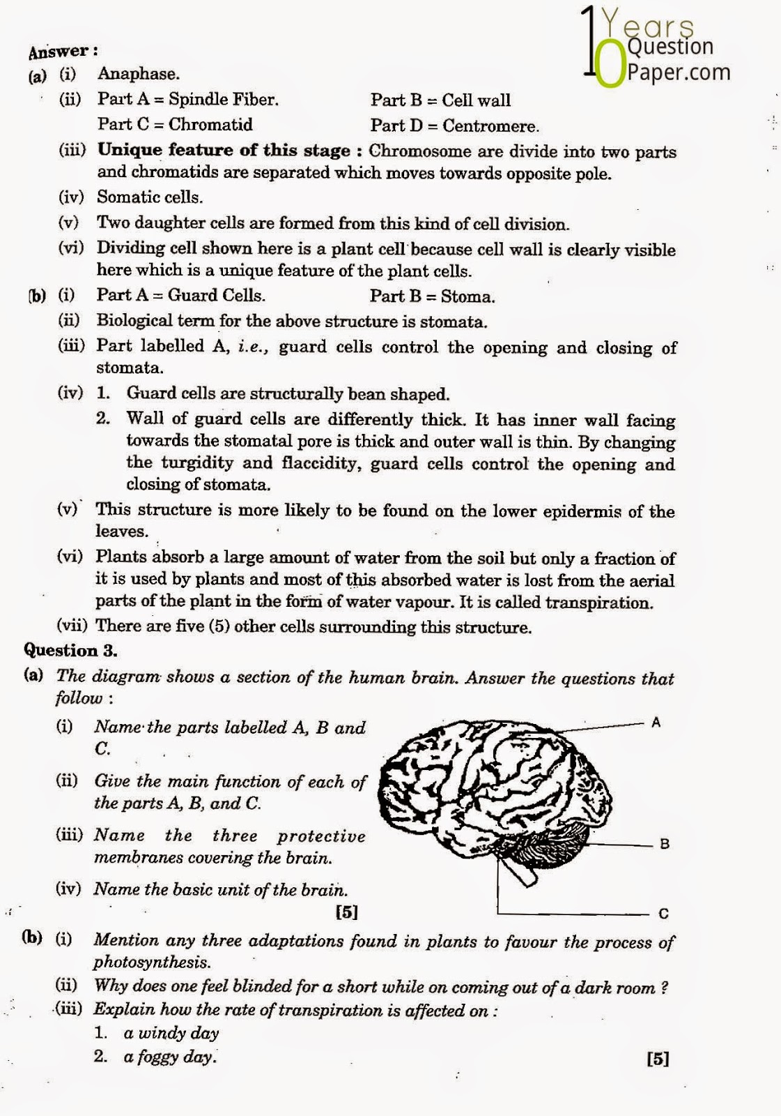 biology question paper Below are all the gcse biology past papers grouped by subject, available for download if you have gcse biology past question papers and mark schemes that are.
