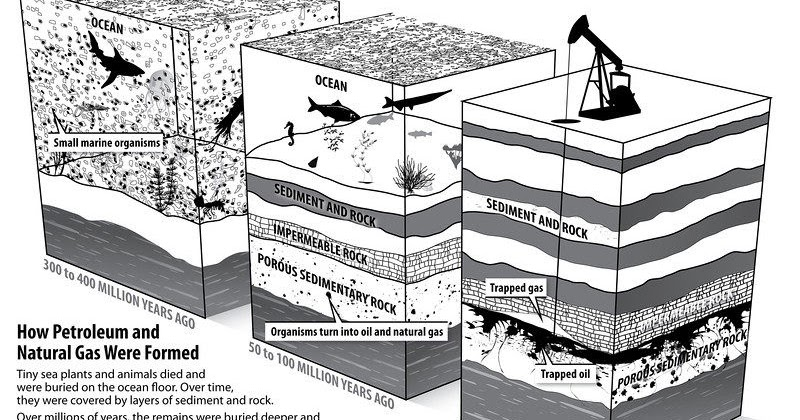 What Is The Formation Of Oil And Natural Gas