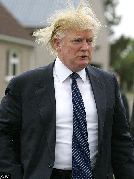 donald trump hair. Donald Trump: