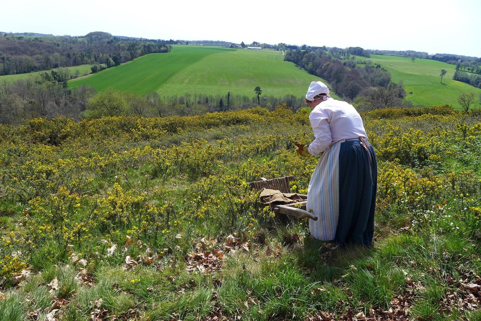 bretonne poul fetan