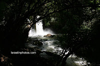 רמת הגולן בתמונות: שמורת טבע נחל חרמון - בניאס