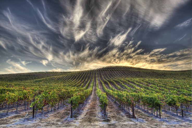 Dramatic weather in Napa Valley