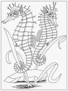 Realistic Sea Horse Coloring Pages For Adult
