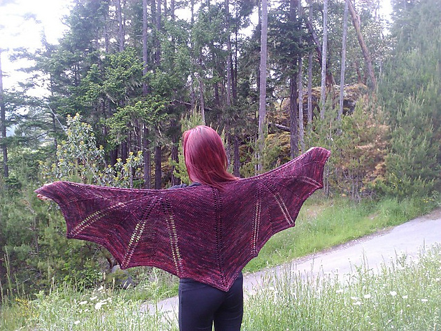 Dragon Wings Knitting Pattern : The Everyday Goth: If I could Knit...