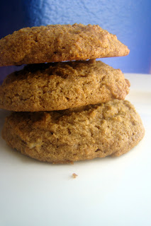 Nourished and Nurtured: Soft Molasses Cookies (gluten-free)