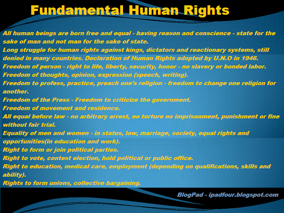 human rights essay contest