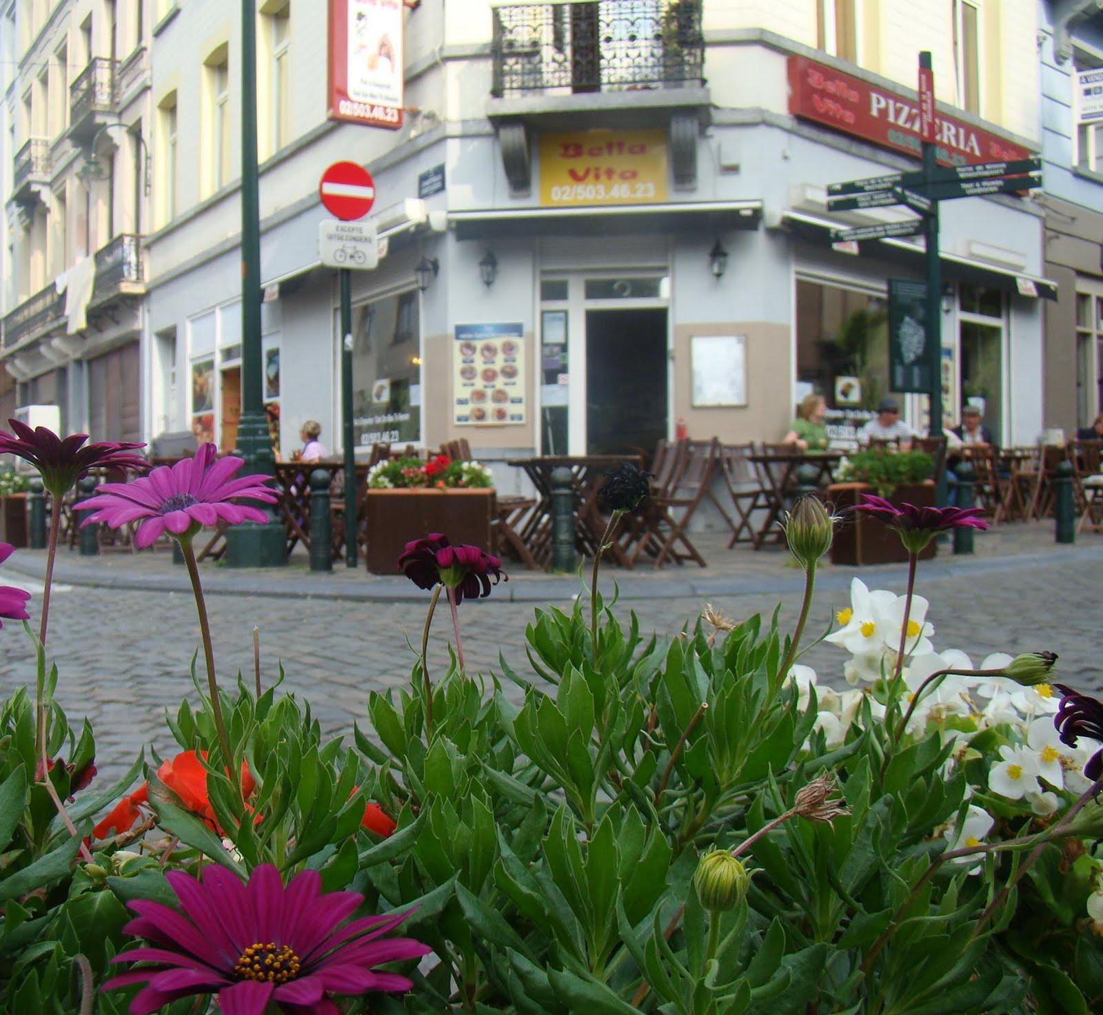 Pizzeria bella vita place jardin aux fleurs for Jardin aux fleurs