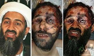 Osama bin Laden  Wikipedia