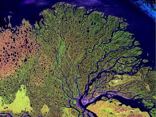 Sungai Lena di Siberia