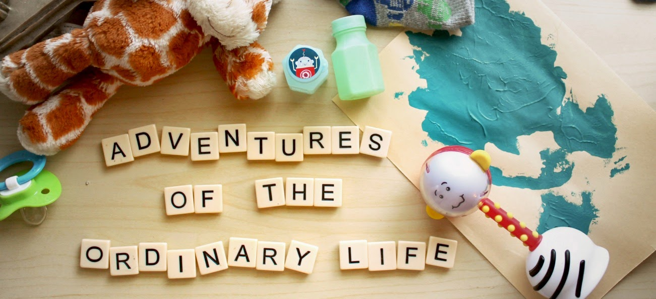 Adventures of the Ordinary Life