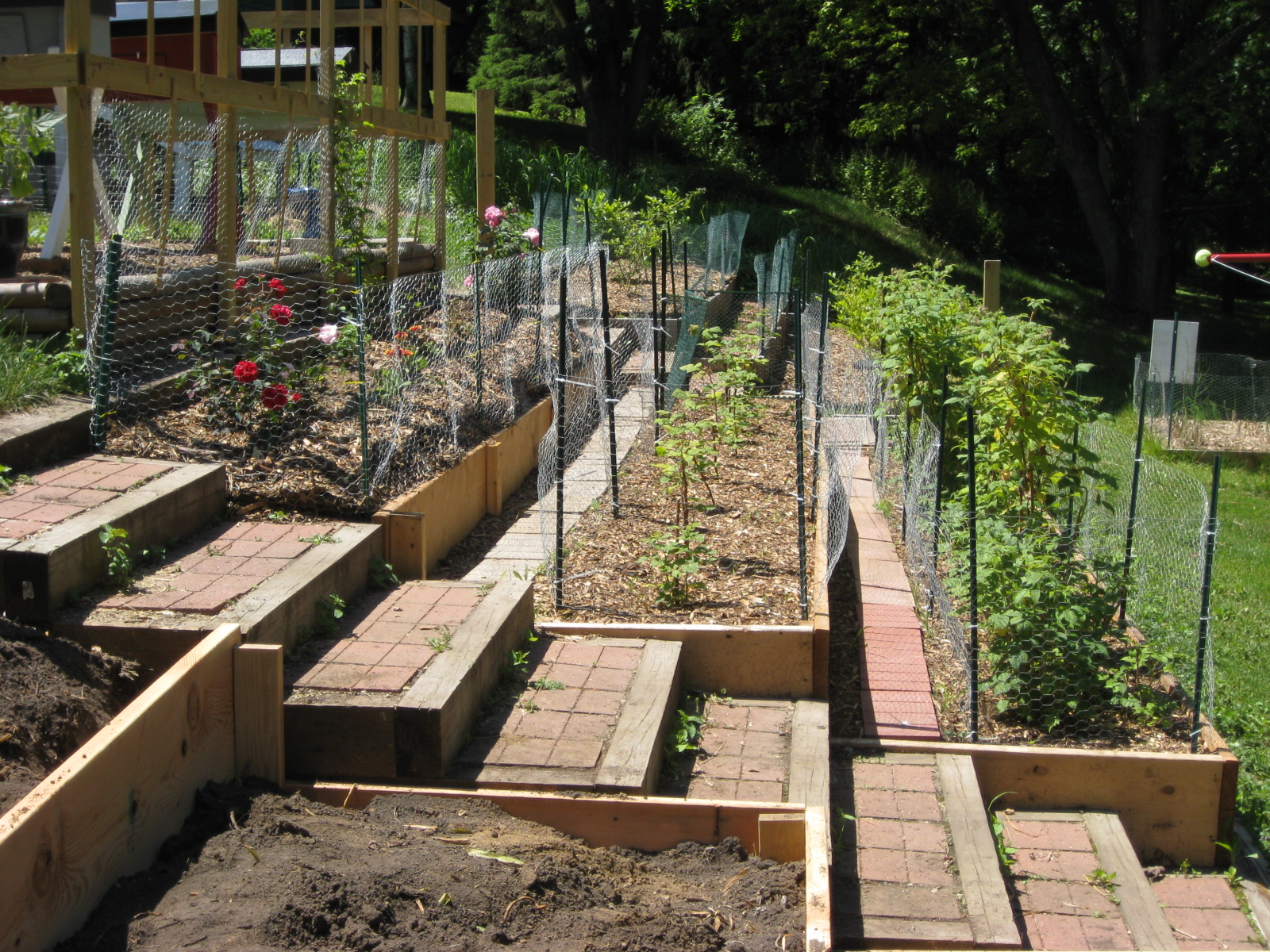 Red bucket farm garden terraces for Hills farm and garden