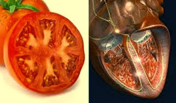 El beneficio de los alimentos naturales