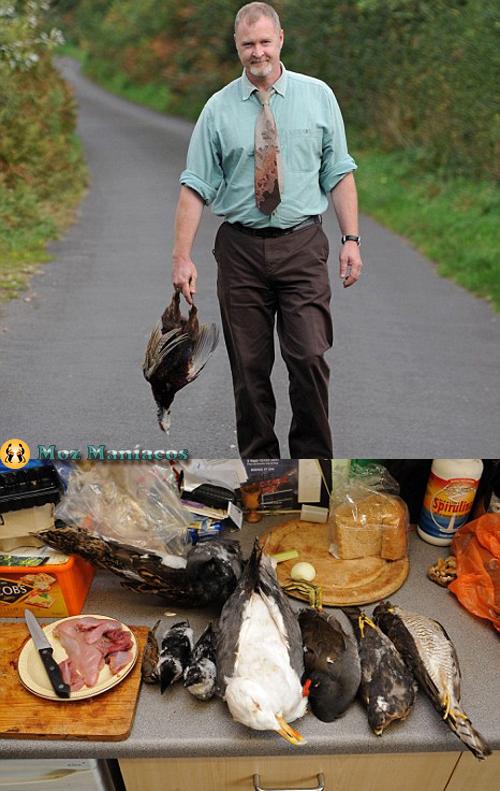 Viver comendo animais mortos na estrada
