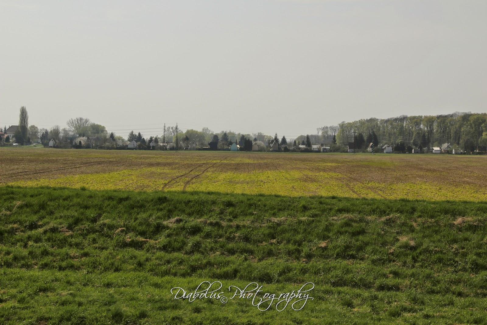 Pohled na Holíč od zahrádkářské osady Baráky směrem k Holíčskému letišti