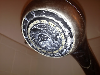 cleaning your shower head