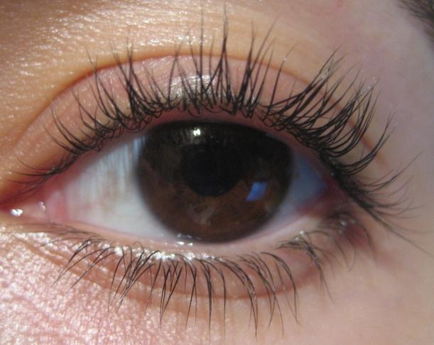 Nail & Polish: Tweezerman Super Eyelash Curler Review