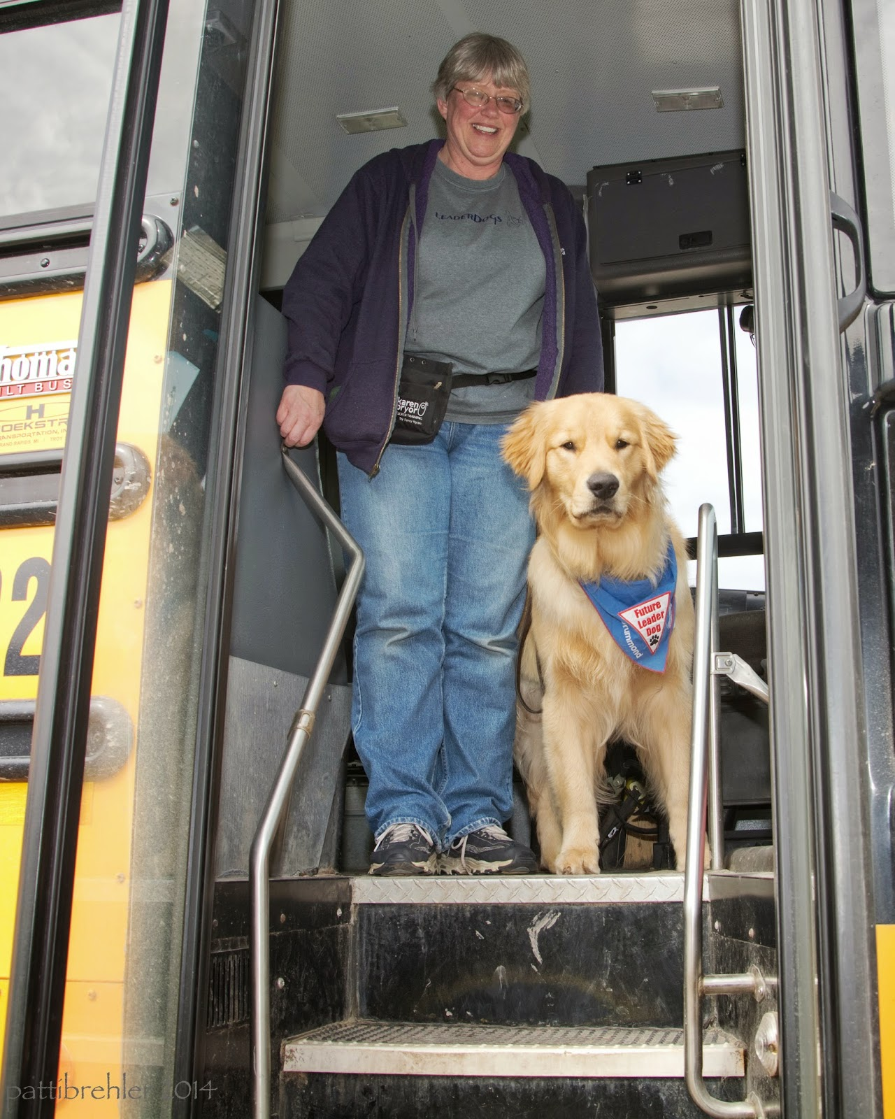 A woman with short grey hair and wearing blue jeans a grey t-shirt and a purple zippered sweatshirt open is standing at the top of the steps coming out of a school bus. She is wearing a black treat bag on her waist and smiling at the camera. A large golden retriever puppy is standing at her left side looking out at the camera. He is wearing a blue Future Leader Dog bandana.