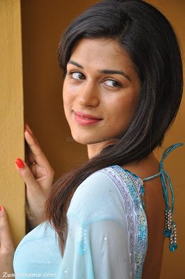 Shraddha Das looks beautiful in saree