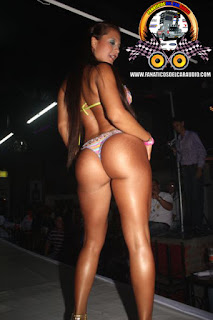 Modelo Colombiana cola sexy hot Wallpaper chica car audio