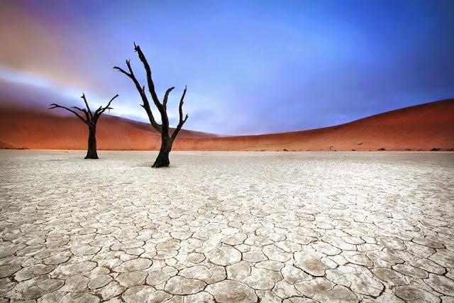 Naukluft Milli Park Namib Çölü