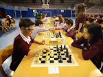 Campionat Escacs