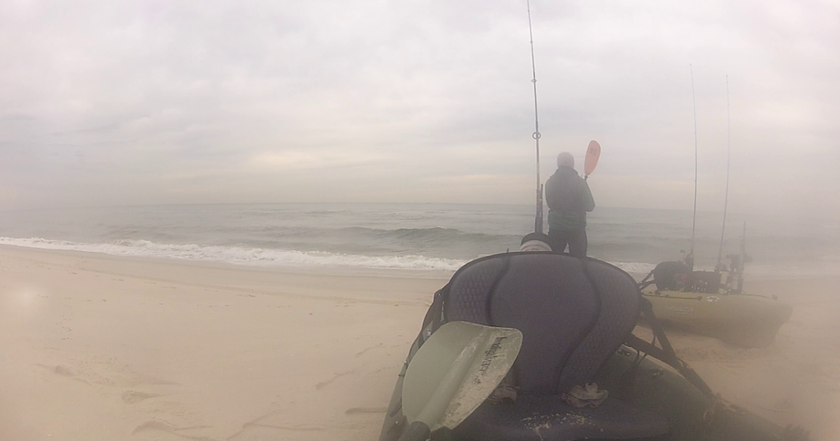 New jersey fishing report fishing new jersey nj for Ocean city nj surf fishing report