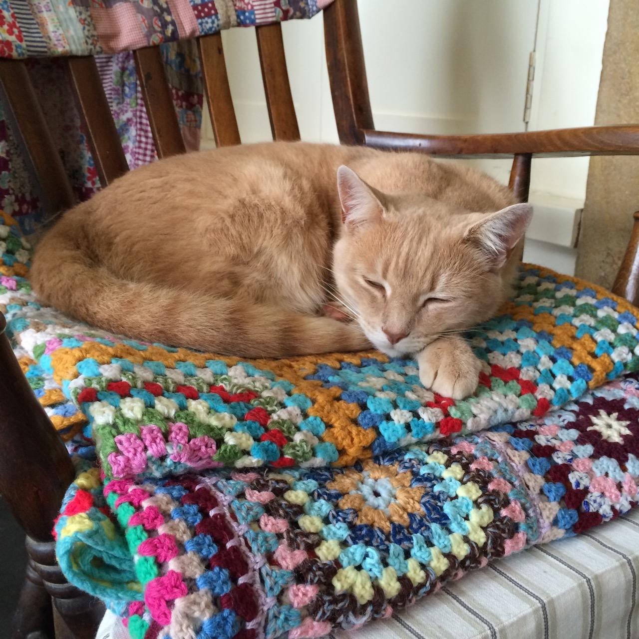 Mr Peach