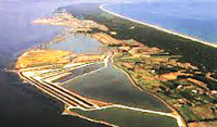 Garganistan Gargano Laguna di Lesina Bosco Isola