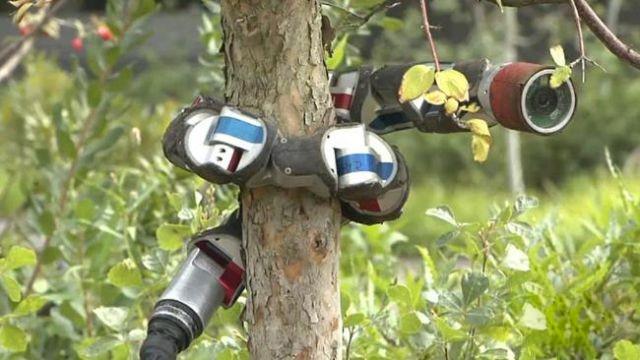 شاهد بالفيديو الروبوت الثعبان جاهز لخدمة الجيش الأمريكي ضد العدو! 797901-snake-robot.jpg