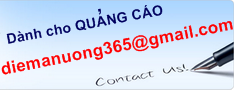 Banner Top-Diemanuong365-234x90