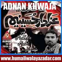 http://ishqehaider.blogspot.com/2013/11/adna-khwaja-nohay-2014.html