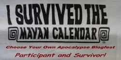 Apocalypse 2012 Survivor!