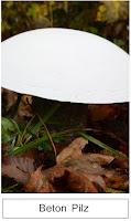 http://kristallzauber.blogspot.de/2014/11/diy-ruck-zuck-pilze-selbstgemacht-aus.html