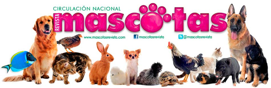 Mascotas Revista