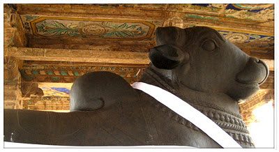Statue of Nandi at Thanjavur Big Temple